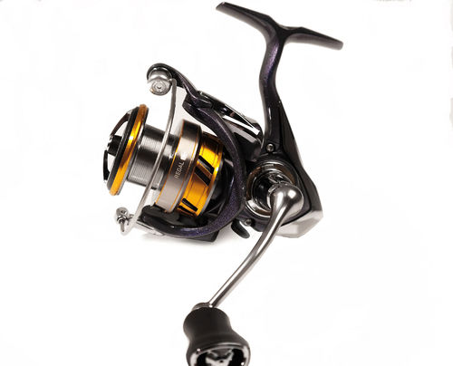 DAIWA Sondermodell REGAL LT (Light & Tough) - Leichte Frontbremsrolle - Neuheit